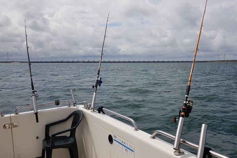 2019 Shark Atag  (53)